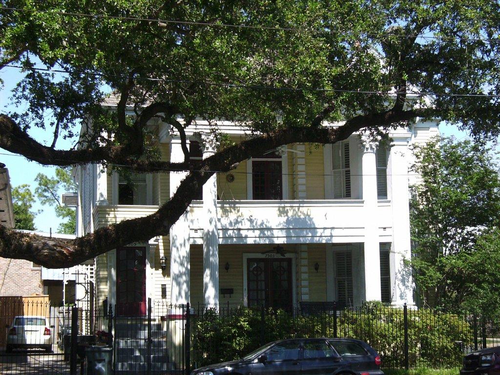 Geert-Driessen-New-Orleans-St-Charles-Av-13.JPG
